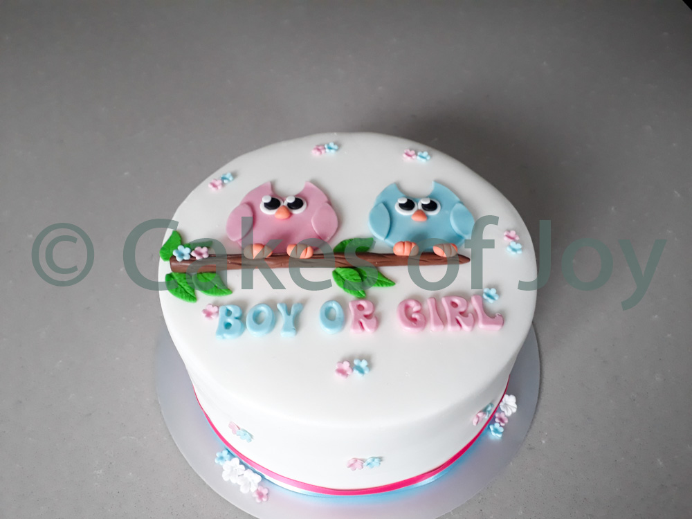 boy or girl gender reveal taart
